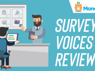 Survey Voices